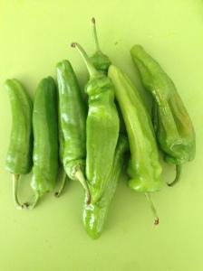 Friggitelli ou friarelli, seja como for, essa é a pimenta doce daqui.