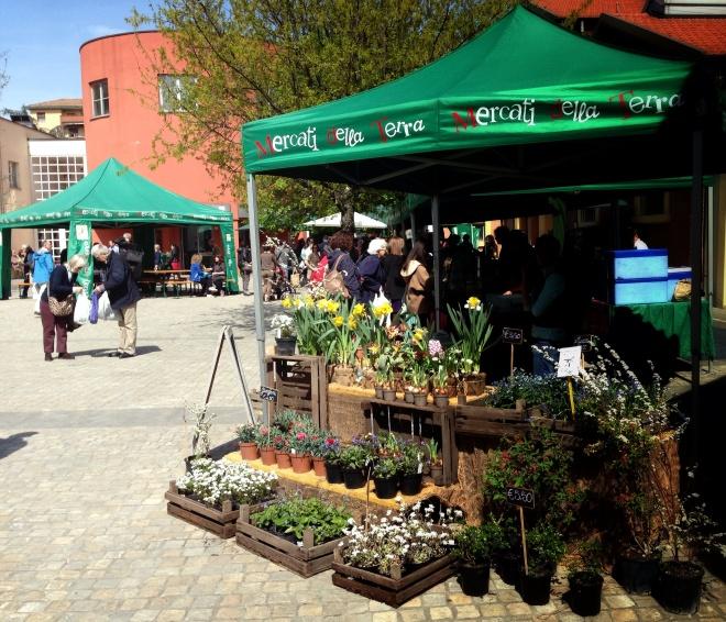 Flores no mercado