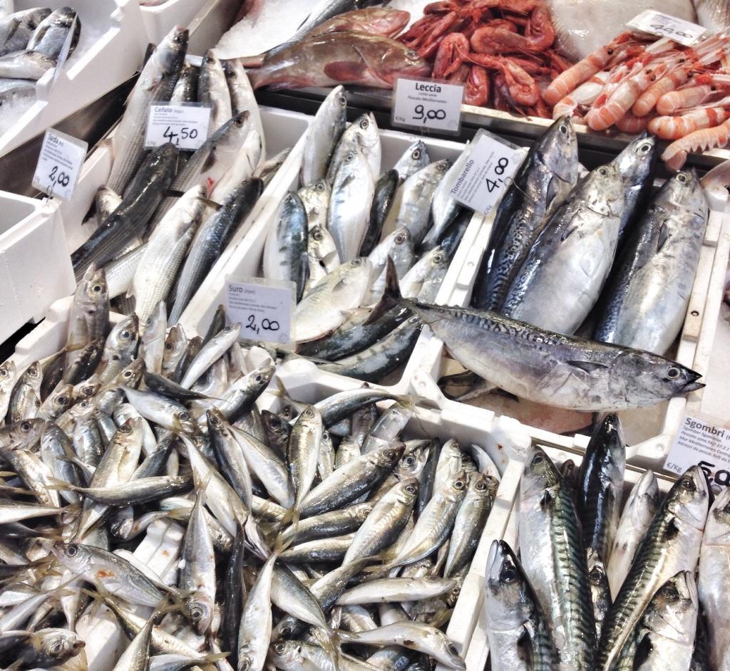 Peixe fresco no coração de Bologna