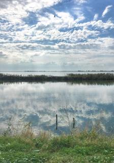 Parco del Delta del Po - casa de milhares de aves (Foto: Simone Tortini)